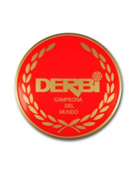 PLACA DECORATIVA DERBI